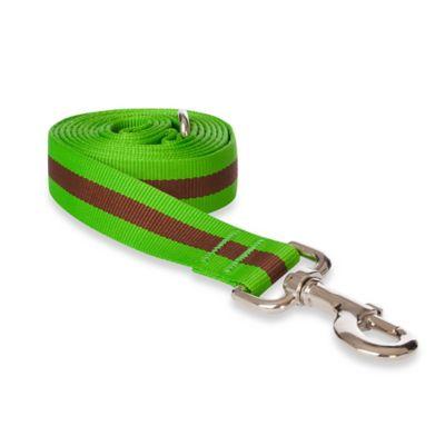 Fab Dog Large Stripe Leash in Green
