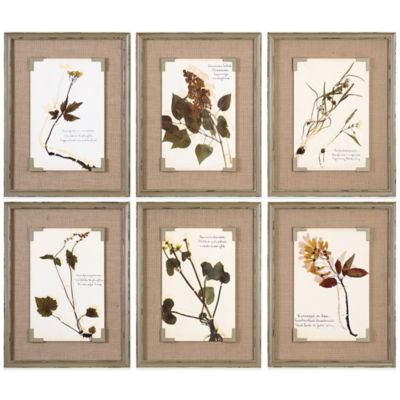 Uttermost Ceramic Florals Framed Wall Art (Set of 6)