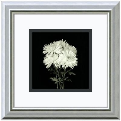 Walter Gritsik Flower Series IX Framed Print Wall Art