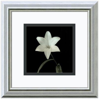 Flowers Black Wall Art