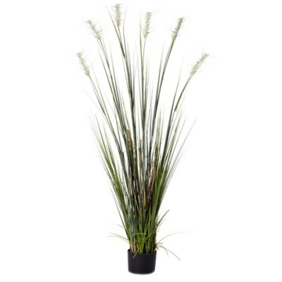 6-Foot Beach Grass (Set of 2)