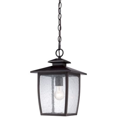 Quoizel Bradley Ceiling-Mount Outdoor Large Hanging Lantern in Palladian Bronze