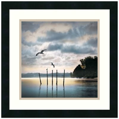 William Vanscoy Circling Skies Framed Print Wall Art