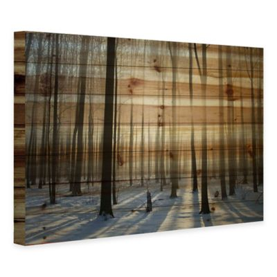 Parvez Taj Into the Woods Pine Wood Wall Art
