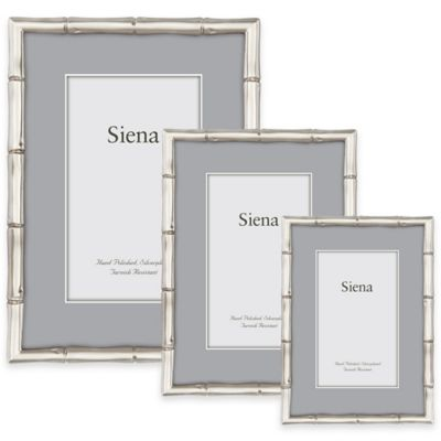 Siena 4-Inch x 6-Inch Cast Metal Bamboo Pattern Frame