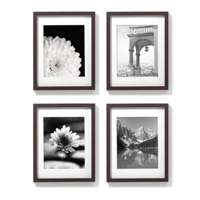 11-Inch x 14-Inch Gallery Frames in Espresso (Set of 4)