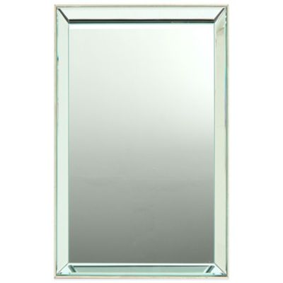 Georgina 20-Inch x 30-Inch Rectangular Wall Mirror in Silver