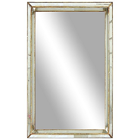 20 inch x 30 inch franklin rectangular mirror in antiqued for Mirror 20 x 30