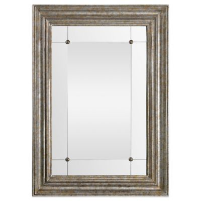 Ren-Will 30-Inch x 42-Inch Rectangular Charlemagne Mirror in Gold