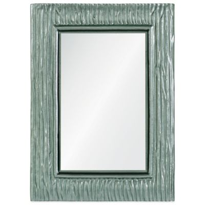 Ren-Will 25-Inch x 34-Inch Rectangular Scott Mirror in Silver