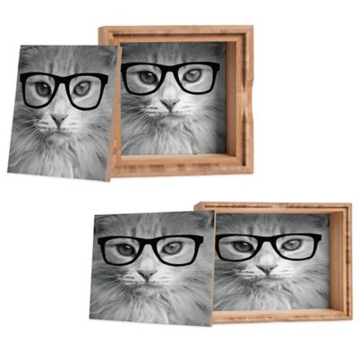DENY Designs Medium Allyson Johnson Hippest Cat Jewelry Box
