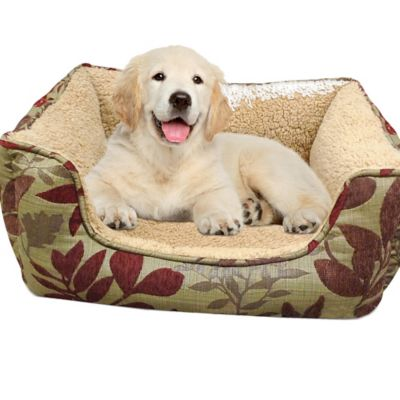 Foam Dog Bed's