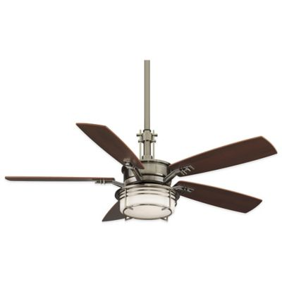 Fanimation Andover 54-Inch Ceiling Fan in Oil-Rubbed Bronze with Amber Glass