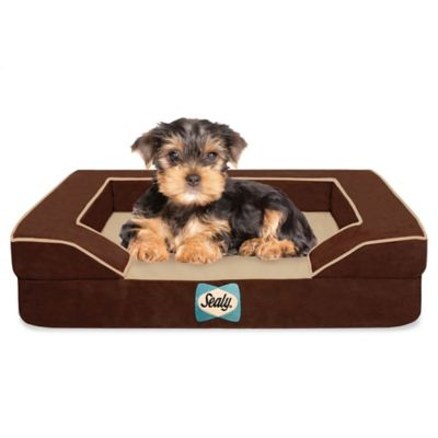 Sealy® Small Dog Bed with Quad Layer Technology in Autumn Brown