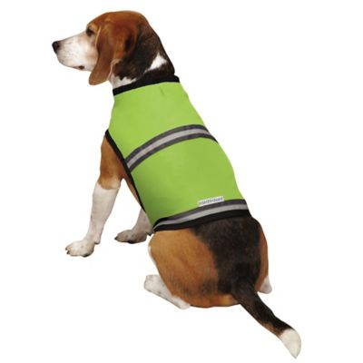 Insect Shield® Extra-Large Safety Pet Vest in Fern