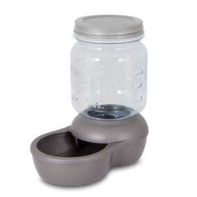 Petmate® Replendish 5-lb. Mason Jar Feeder