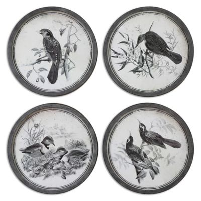 Uttermost Birds in Nature Framed Art (Set of 4)
