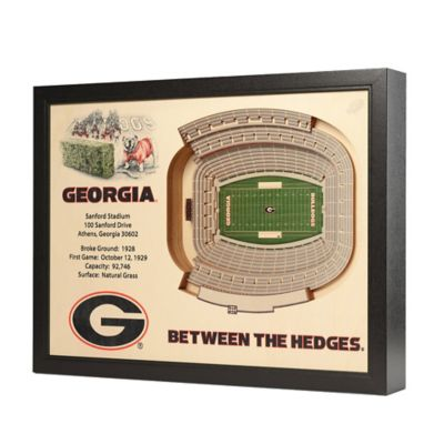 University of Georgia Stadium Views Wall Art