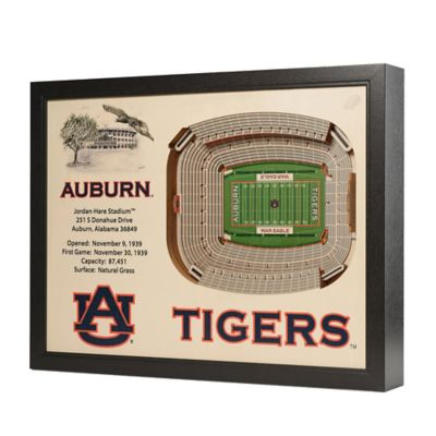 Auburn University Stadium Views Wall Art