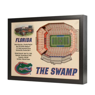 University of Florida Stadium Views Wall Art