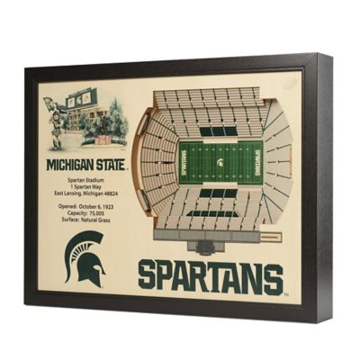 Michigan State University Stadium Views Wall Art