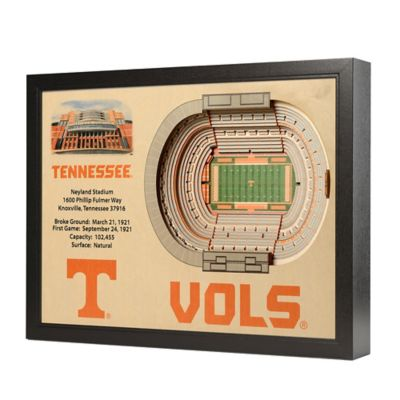 University of Tennessee Stadium Views Wall Art