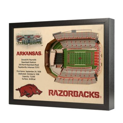 University of Arkansas Stadium Views Wall Art