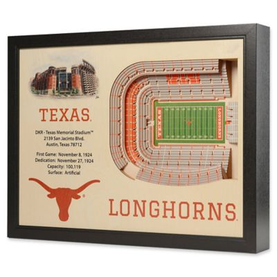 University of Texas Stadium Views Wall Art