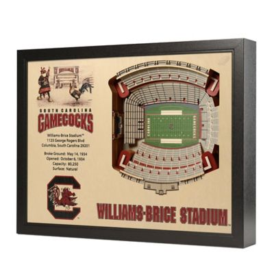 University of South Carolina Stadium Views Wall Art