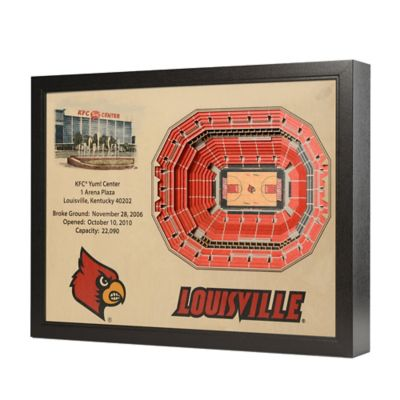 University Louisville Stadium Views Wall Art
