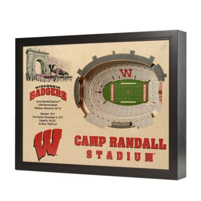 University of Wisconsin Stadium Views Wall Art