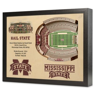 Mississippi State University Stadium Views Wall Art