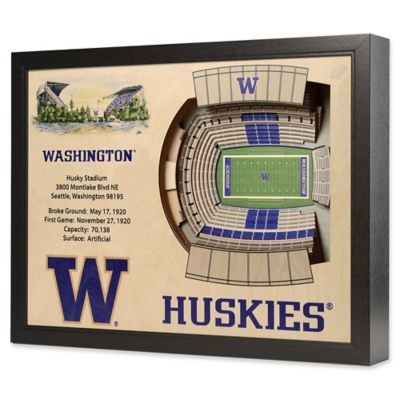 University of Washington Stadium Views Wall Art