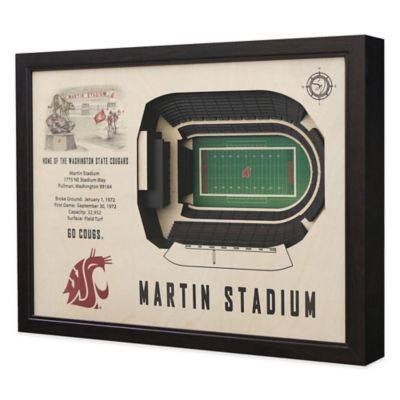 Washington State University Stadium Views Wall Art
