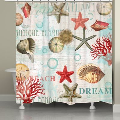 Laural Home® Dream Beach Shells Shower Curtain