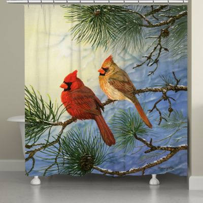 Cardinals On a Shower Curtain