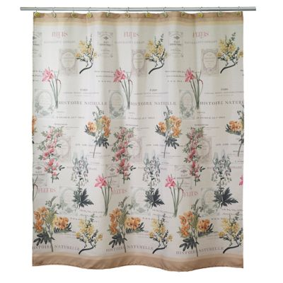 Avanti Alana Shower Curtain in Ivory