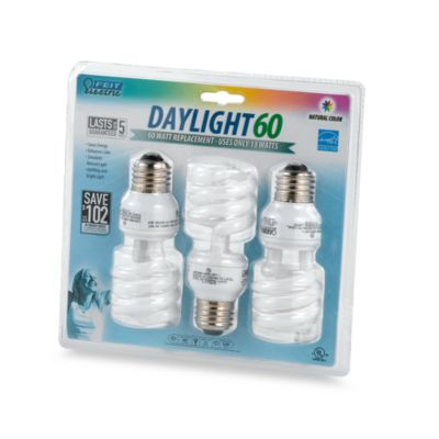 CFL 3-Pack 60-Watt Light Bulbs