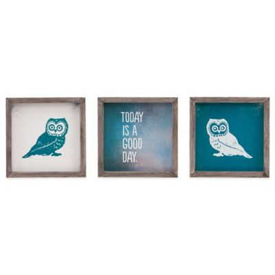 Evangeline Taylor Wise As An Owl 3-Piece Framed Gel Coat Wall Art