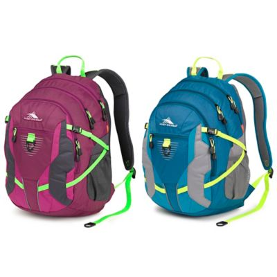 High Sierra® Aggro 13.5-Inch Laptop Backpack in Berry Blast