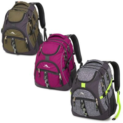 High Sierra® Access 20-Inch Laptop Backpack in Berry Blast