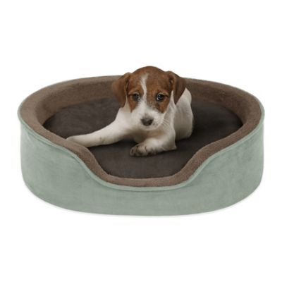Soft Touch 14-Inch x 18-Inch Polyester Oval Cuddler Pet Bed in Chocolate