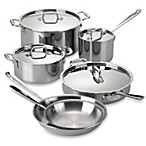 All-Clad Stainless Steel 10-Piece Cookware Set