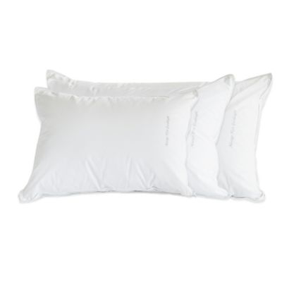 "The Pillow Bar® Standard Down ""Always Kiss Goodnight"" Back Sleeper Pillow"