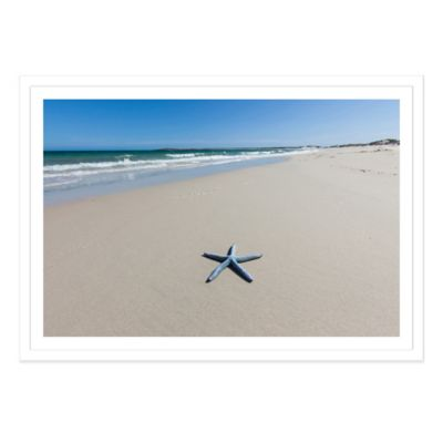 Blue Starfish on a Beach, South Australia Extra-Large Photographed Framed Print Wall Art
