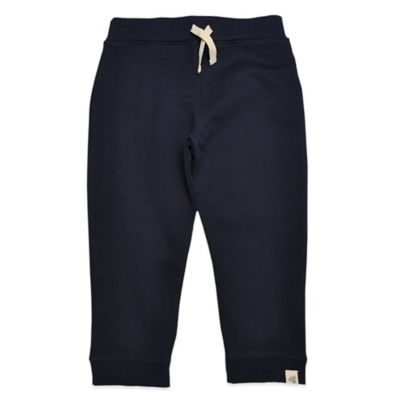 Burt's Bees Baby™ Size 24M Organic Cotton French Terry Sweat Pant in Navy