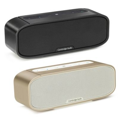 G2 Portable Bluetooth Speaker in Champagne
