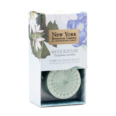 The New York Botanical Garden Water Blossom 6-Piece Wax Melts (Set of 3)