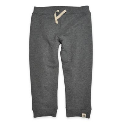 Burt's Bees Baby™ Size 24M Organic Cotton French Terry Sweat Pant in Charcoal Grey