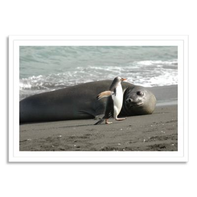 Beach Buddies Medium Photographic Wall Art